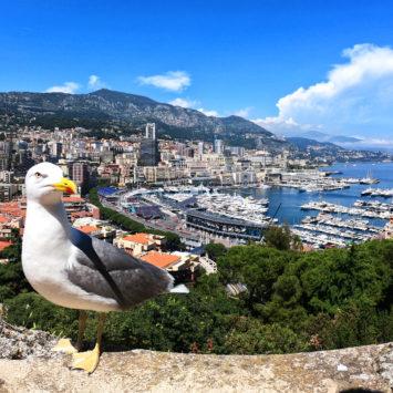 Cum sa calatoresti ieftin la Monaco?